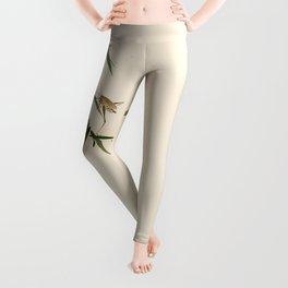 oriental Leggings