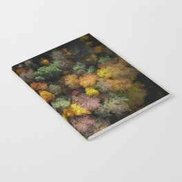 Autumn Forest - Aerial Photography Notebook