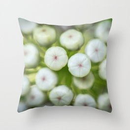 Wht-flowered Milkweed Throw Pillow