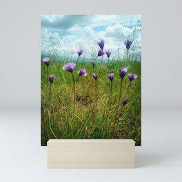Violet beauties  Mini Art Print