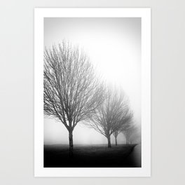 Foggy Trees Art Print