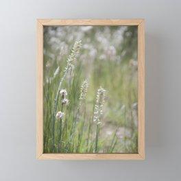 Wild Nature Framed Mini Art Print