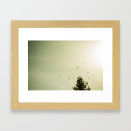 On the Move Framed Art Print