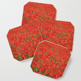 A field of red poppies Coaster