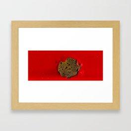 Rust on Red Framed Art Print