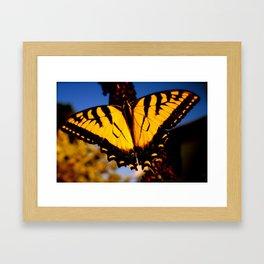 Photographs Framed Art Print