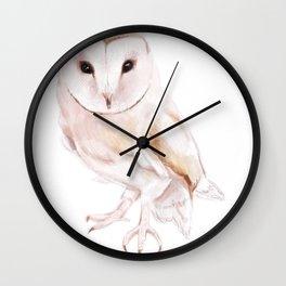 I dont give a Hoot Wall Clock