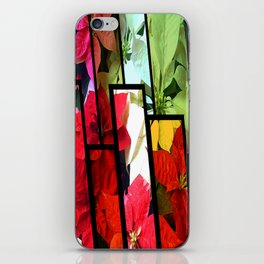 Mixed color Poinsettias 1 Tinted 1 iPhone Skin