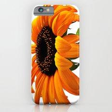 FLOWER 032 iPhone 6 Slim Case
