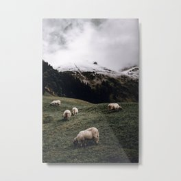 Sheep III / Bavarian Alps Metal Print
