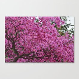 Flower Boom Canvas Print