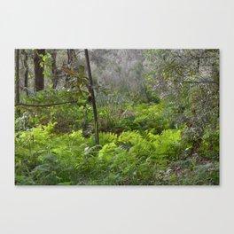 Bush Landscape Canvas Print