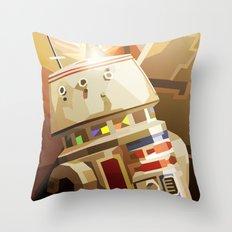 SW#53 Throw Pillow
