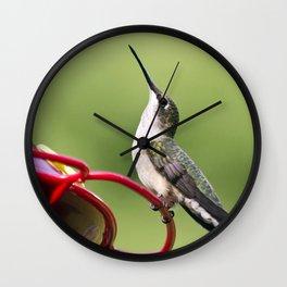 Hummingbird on Feeder Wall Clock