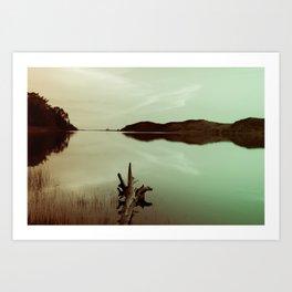 Summer Stillness Art Print