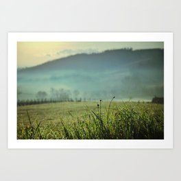 Misty morning in Tuscany Art Print