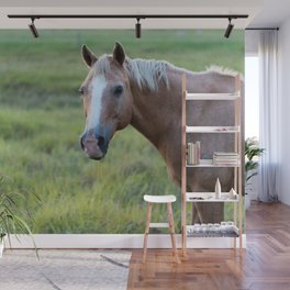 Pony Love Wall Mural