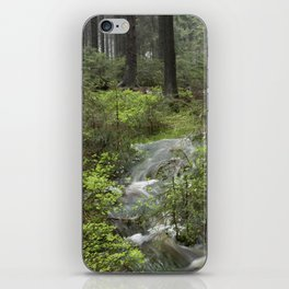 Mountains, forest, water. iPhone Skin