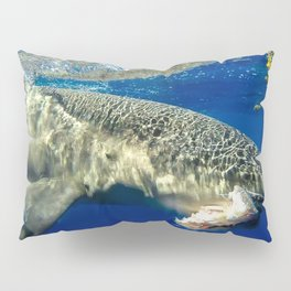 Shark Snack Pillow Sham