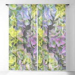 Green purple hydrangea Sheer Curtain