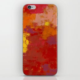Color Splendor by Kathy Morton Stanion iPhone Skin
