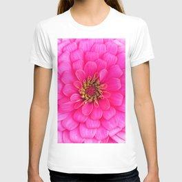 Hot Pink Zinnia Blooming Close Up  T-shirt