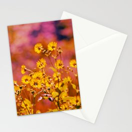 rosy daisies Stationery Cards