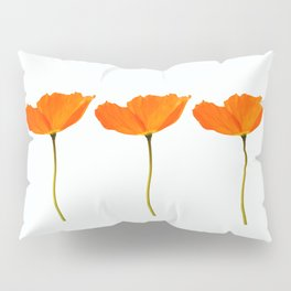 Three Orange Poppy Flowers White Background #decor #society6 #buyart Pillow Sham