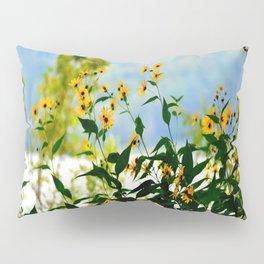 Naturally Clear Pillow Sham