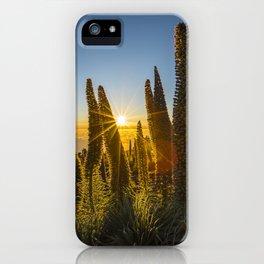 Tajinastes sunset iPhone Case