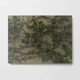 RANKE oliv Metal Print
