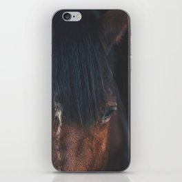 Horse - Cheyenne iPhone Skin