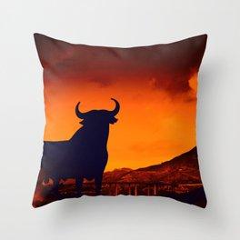 Spanish Symbol Throw Pillow