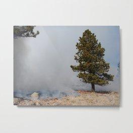 Warming Fire Metal Print