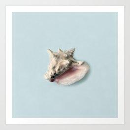 Beige and Pink Shell on Aqua Blue Art Print