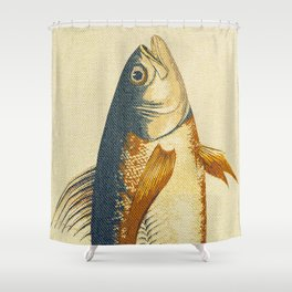 Piscibus 8 Shower Curtain