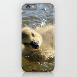 Silly Goslings iPhone Case