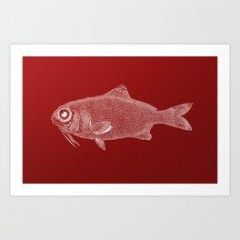 red fish poisson Art Print