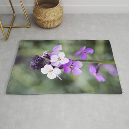Dame's Rocket from Bud to Bloom Rug