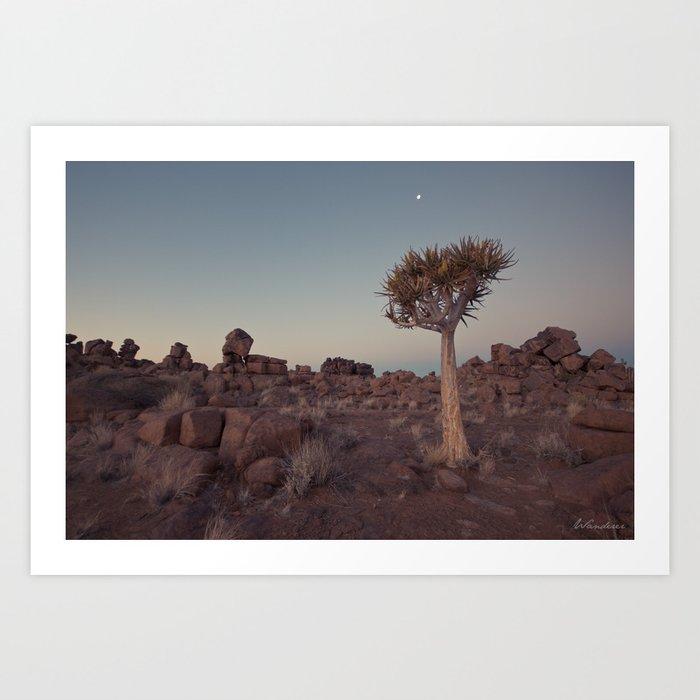 Desert Quiver Tree at dusk - Landscape photography #Society6 Kunstdrucke