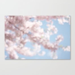 Natures candy floss Canvas Print