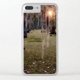 Witch's Hair at Sunrise on the Swamp Clear iPhone Case