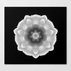 Kaleidoscope of a Rose Canvas Print