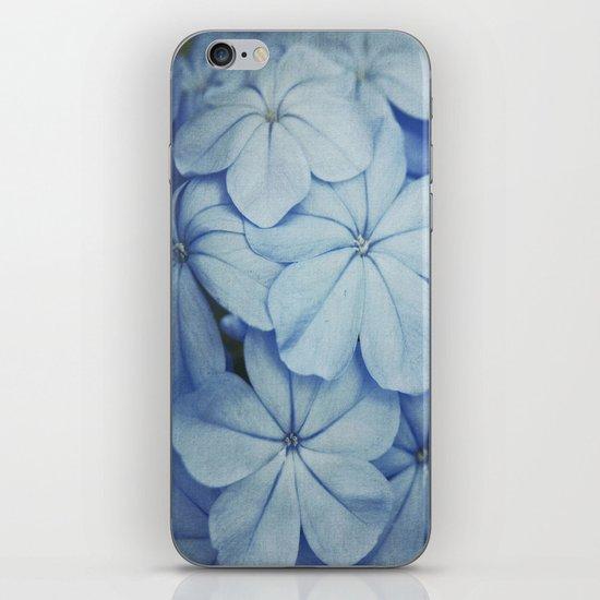 Blue Plumbago iPhone & iPod Skin