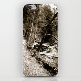 Follow Your Path iPhone Skin