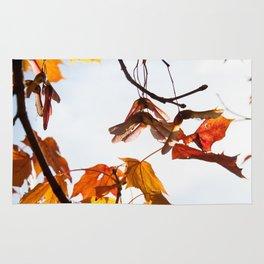 Autumn Sonata I Rug