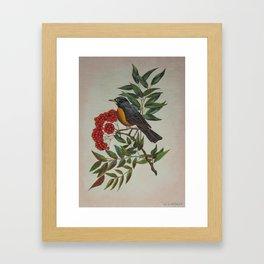 Still Life Bird Framed Art Print