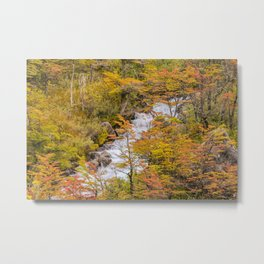 Colored Forest Landscape, Patagonia - Argentina Metal Print