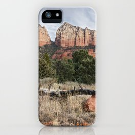 Fallen tree Sedona Arizona iPhone Case