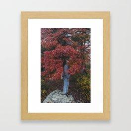 FliFli Framed Art Print